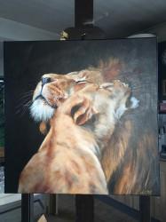 Hugging lions. 50x50cm